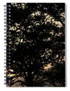 Trees - San Salvador II Spiral Notebook
