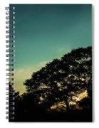 Trees - San Salvador V Spiral Notebook