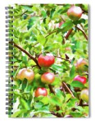 Trees With Red Apples In An Orchard Spiral Notebook