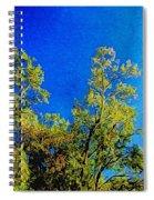 Treetops Spiral Notebook