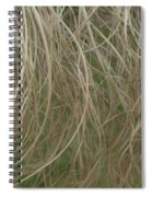 Tresses Spiral Notebook
