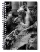 Trevi Fountain Detail 2 Spiral Notebook