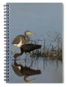 Tri-colored Heron And Glossy Ibis Spiral Notebook