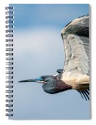 Tri-colored Heron In Flight Spiral Notebook