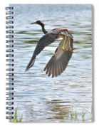 Tri Colored Heron Over The Pond Spiral Notebook