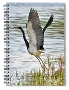 Tri Colored Heron Takeoff Spiral Notebook