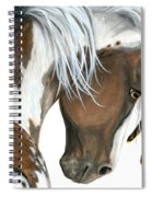 Tri Colored Pinto Horse Spiral Notebook