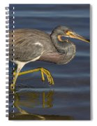 Tricolored Heron 1 Spiral Notebook