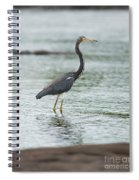 Tricolored..  Spiral Notebook