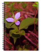 Trilliam  Spiral Notebook