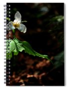 Trillium In The Woods Spiral Notebook