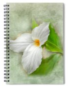 Trillium Wildflower  Spiral Notebook