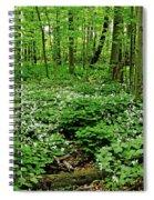 Trillium Woods Vi Spiral Notebook