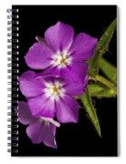 Trio In Purple Spiral Notebook