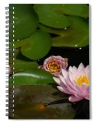 Trio Of Pink Lotus Waterlilies Spiral Notebook