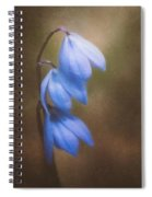 Trio Of Spring Flowers Spiral Notebook