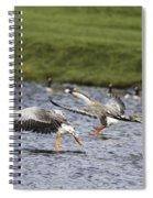Triple Lift Off Spiral Notebook