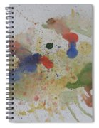 Triple Rooster Race Spiral Notebook