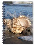 Triton Shell  Spiral Notebook