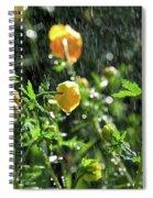 Trollius Europaeus Spring Flowers In The Rain Spiral Notebook