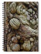 Trolls Skin Spiral Notebook