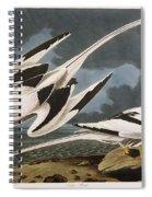 Tropic Bird Spiral Notebook