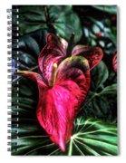 Anthurium Red Tropical Flower Spiral Notebook