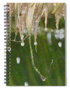 Tropical Bali Rain Spiral Notebook