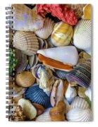 Tropical Beach Seashell Treasures 1550b Spiral Notebook