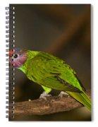 Tropical Bird Spiral Notebook