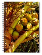 Tropical Dreams 1 Spiral Notebook