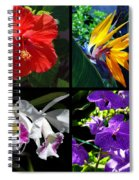 Tropical Flowers Multiples Spiral Notebook