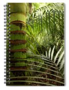 Tropical Forest Jungle Spiral Notebook