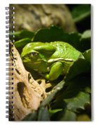 Tropical Green Frog Spiral Notebook
