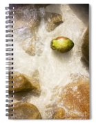 Tropical Island Coconut Spiral Notebook