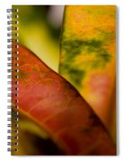 Tropical Leaf Abstract Spiral Notebook