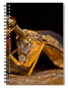 Tropical Mantispid Spiral Notebook