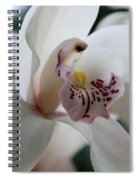Tropical Orchid Spiral Notebook