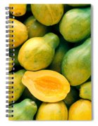 Tropical Papayas Spiral Notebook