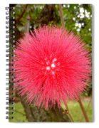 Tropical Red Puff Spiral Notebook