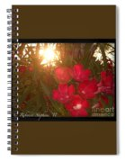 Tropical Red Spiral Notebook