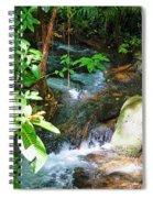 Tropical Stream Spiral Notebook