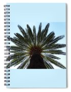 Tropical Summer Palm Tree Spiral Notebook