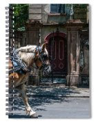 Trotting Into The Past Spiral Notebook