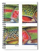 Trout Colors Spiral Notebook