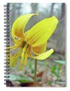 Trout Lily - Erythronium Americanum  Spiral Notebook