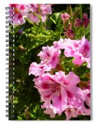 True Color Spiral Notebook