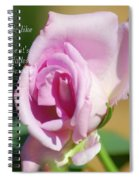 True Friendship Is Like A Rose Spiral Notebook
