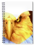 Trumped Gold On White Spiral Notebook