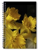 Trumpet Daffodils Spiral Notebook